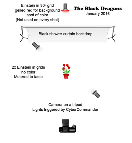 Black-Dragons-Step-1-SETUP