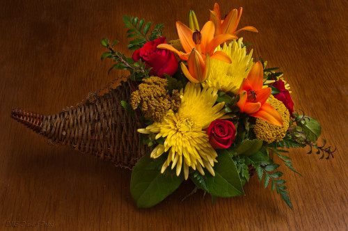 DSC_2220A-Flower-Still-Life-(1800)