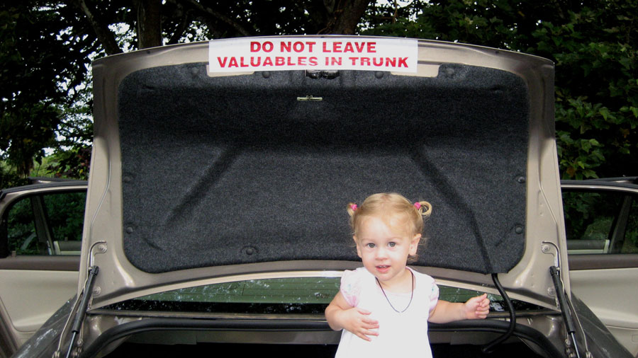 IMG_2425-Do-Not-Leave-Valuables-In-Trunk