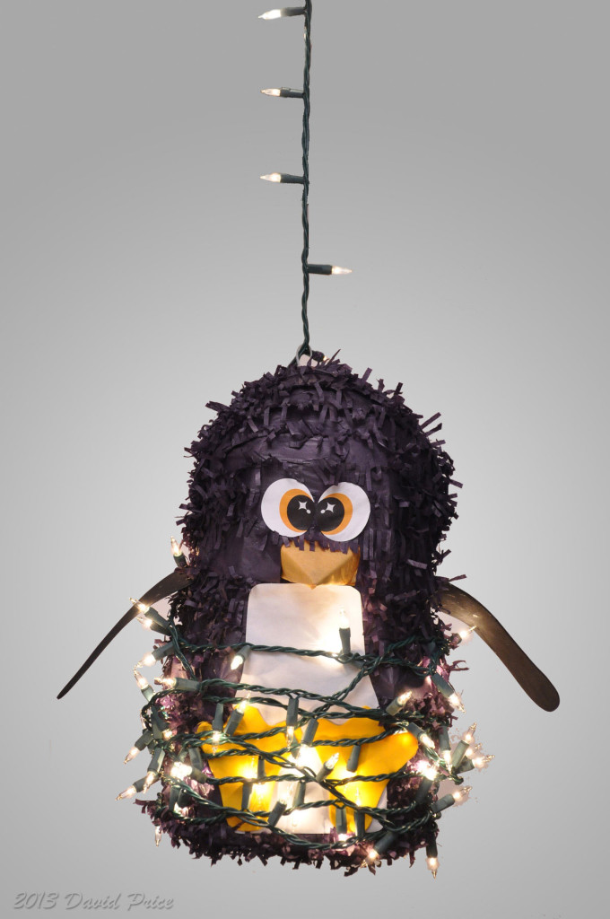 Penguin-Pinata-on-White